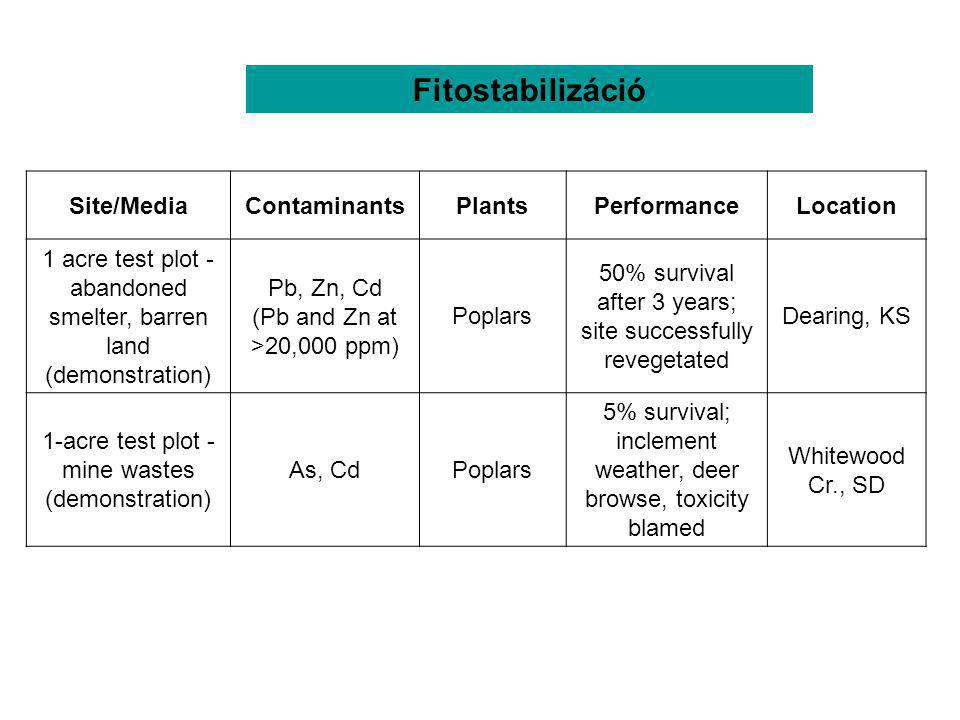Fitostabilizáció Table 1. Phytoremediation field investigations [3].
